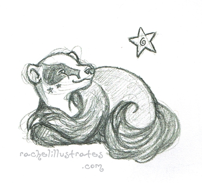 """Star Badger,"" pencil sketch"